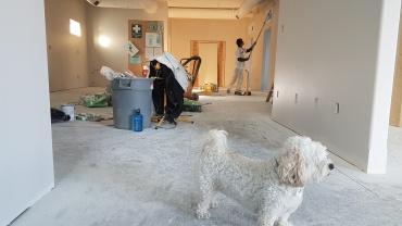Renovation Rearrangement